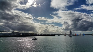 Yachts in the harbour, Auckland