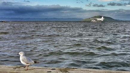 Lake Rotorua waterfront
